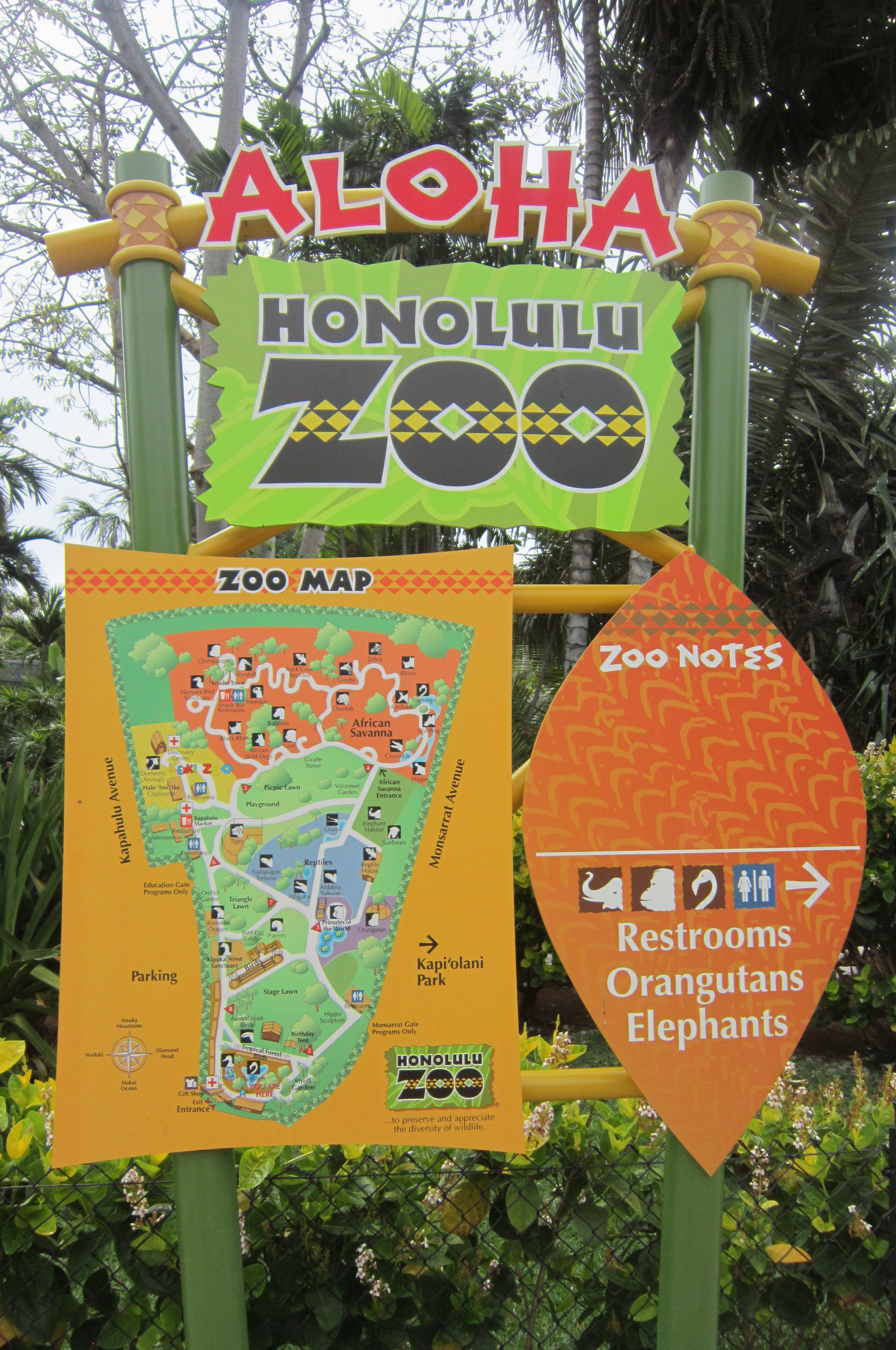 Honolulu Zoo Keiki S Day Out